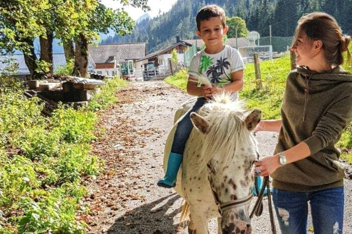 Familienurlaub am Bauernhof ✶ Hinterrohrgut Appartements in Flachau